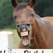 Happy Birthday Smiling Horse Art Print