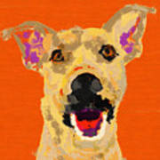 Happy Dog Art Print