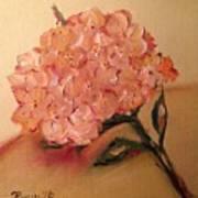 Happy Hydrangea  Art Print