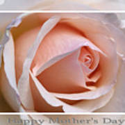 Happy Mother's Day Soft Rose Art Print