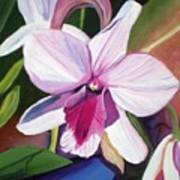 Happy Orchid Art Print