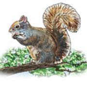 Happy Squirrel  Art Print