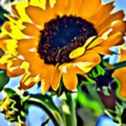 Happy Sunflower Art Print