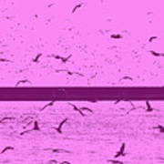 Harbor Gulls Purple Art Print