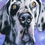 Harlequin Great Dane Art Print