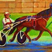 Harness Racing At Bluebonnets Art Print