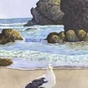 Harris Beach Art Print