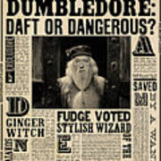Harry Potter And The Half-blood Prince 2009 Art Print
