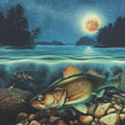 Harvest Moon Walleye 3 Extended Version Art Print