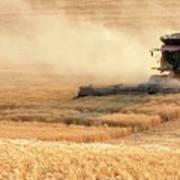 Harvesting Wheat 1336 Art Print