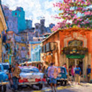 Havana In Bloom Art Print