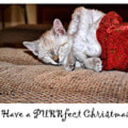Have A Purrfect Christmas Art Print