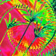 Hawaii Three O Art Print