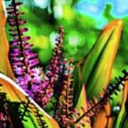 Hawaii Ti Leaf Plant And Flowers Art Print