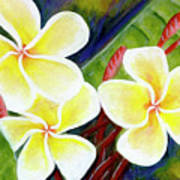 Hawaii Tropical Plumeria Flower #298, Art Print
