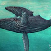 Hawaiian Humpback Whales #455 Art Print
