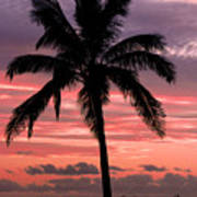Hawaiian Sunset With Coconut Palm Tree Art Print