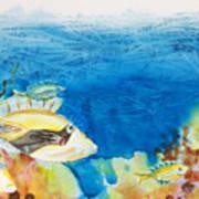 Hawaiian Triggerfish Art Print