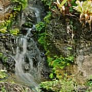 Hawaiian Waterfall Art Print