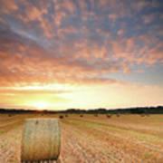 Hay Bale Field At Sunrise Art Print by Stu Meech