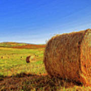 Hay Bales Print by Dominic Piperata