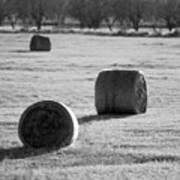Hay Is For Horses Art Print