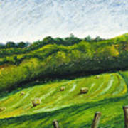 Hayfield Art Print