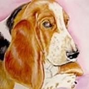 Hazel Art Print