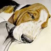 Hazel First Portrait Art Print