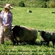 He Calls His Own Sheep By Name Art Print