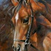 Head Horse Art Print