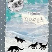 Heading North Art Print