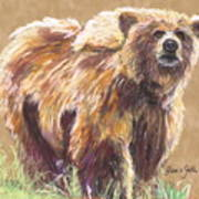 Healthy Brown Bear Art Print