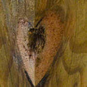 Heart Of The Wood Art Print