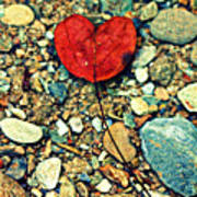 Heart On The Rocks Art Print