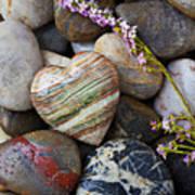 Heart Stone With Wild Flower Art Print