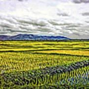 Heartland Oil Art Print