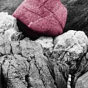 Heartrock Art Print