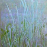 Heaven's Cattails #1 Art Print