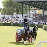 Heavy Horses Competition Art Print