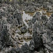 Hell - Grand Cayman Vertical Art Print