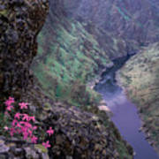 Hells Canyon Art Print