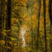 Helton Falls Through The Leaves Art Print