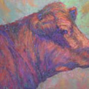 Henry's Red Angus Art Print