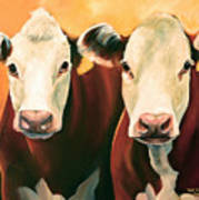 Herefords Art Print