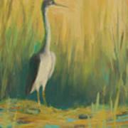 Heron In The Reeds Art Print by Renee Kahn
