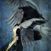 Heron Love  Art Print