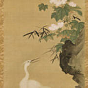Herons And Cotton Roses Art Print