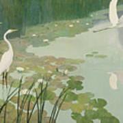 Herons In Summer Art Print