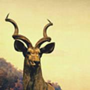 Hi, I Am Kudu Art Print